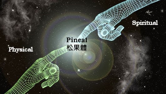 g-d3c6-pineal-god-hands
